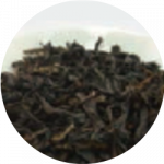 Oolong Tea Extract